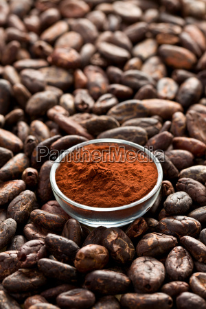 cocoa beans and cocoa powder