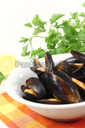 fresh mussels in a cup