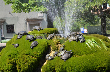 fountain with water turtles