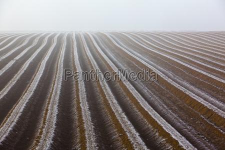 farmland furrow