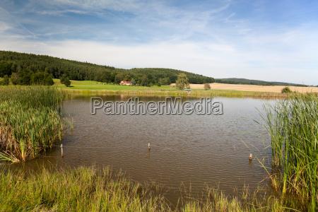 idyllic lake in thueringen