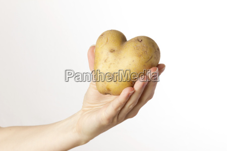 female hand holding a potato heart