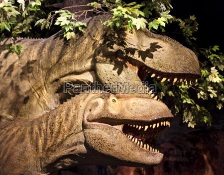 dinosaur duo