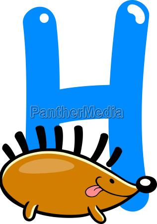 h for hedgehog