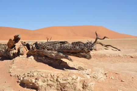 namibia landscape of sossusvlei