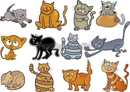 cartoon cats set