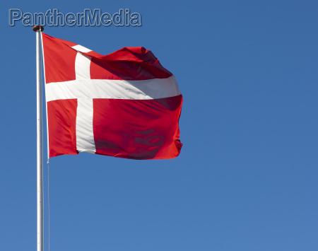 the danish flag dannebrog against a