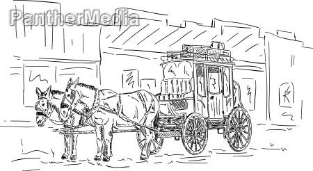 horse western carriage