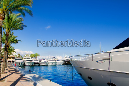 calvia puerto portals nous luxury yachts