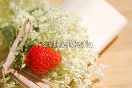 elderflower herb table decorations