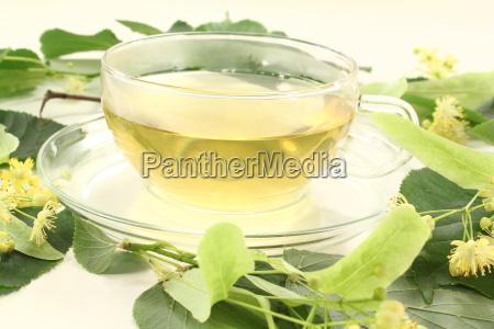 fresh lime flower tea