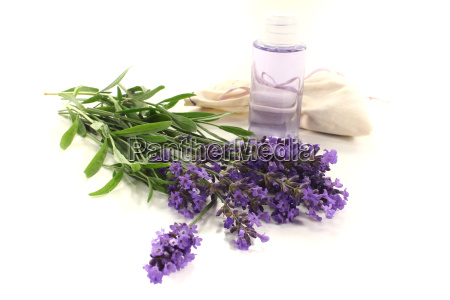 lavender oil with purple flowers