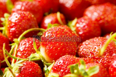 fruit concept red strawberries arranged