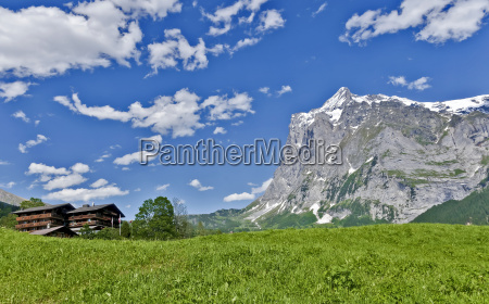 wetterhorn and grosse scheidegg