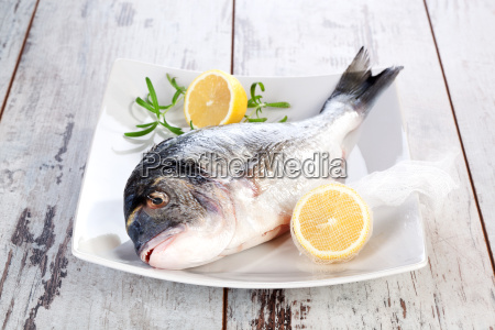seafood fresh fish on white plate