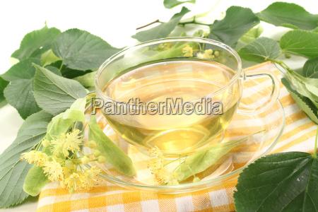 lime blossom tea