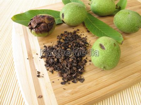 immature infantile childish dried walnut ecru