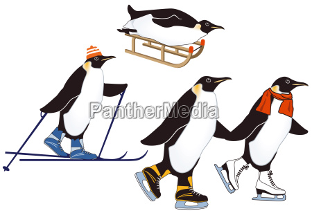 penguins during winter sports