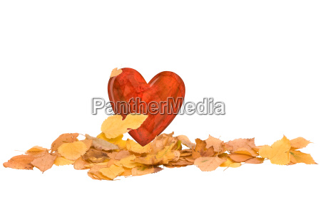 heart in the pile of autumn