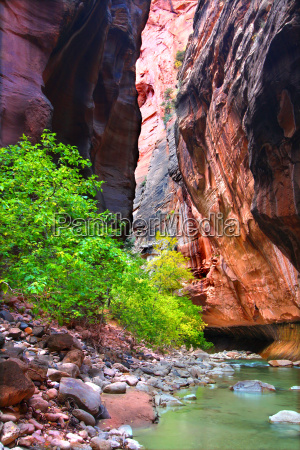 vertical cliffs of the zion narrows
