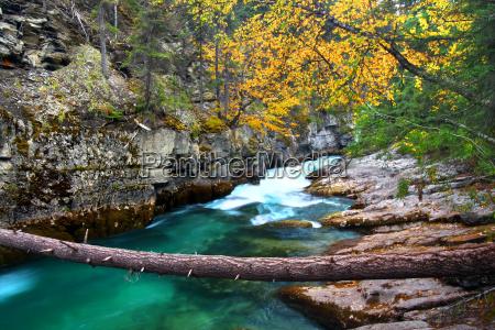 jasper national park malign canyon