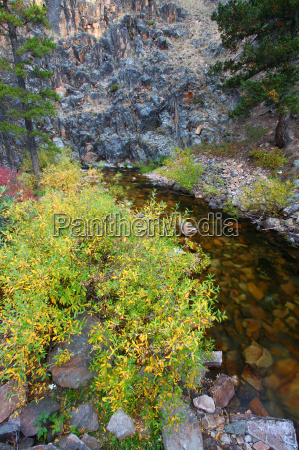 montana stream and rocky cliffs