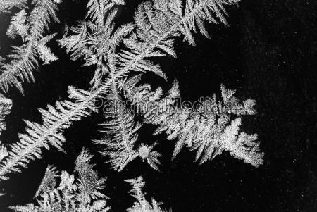 eisblumen surface
