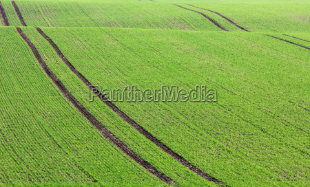 agriculture farming field acre seed agrarian