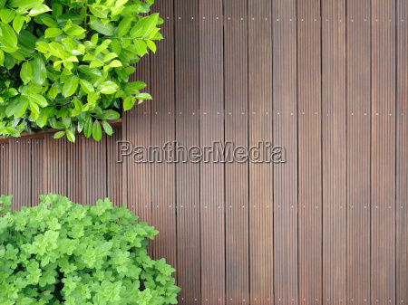 bangkirai terrace from above