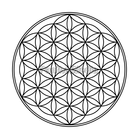 flower of life symbol black and