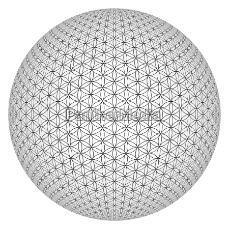 exempted flower of life 3d