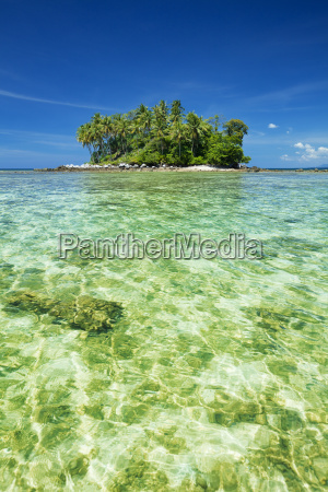 tropical island vertical shot
