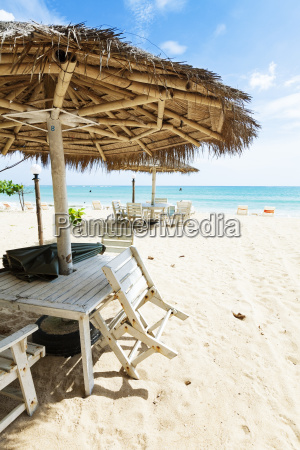 tropical beach vertical shot