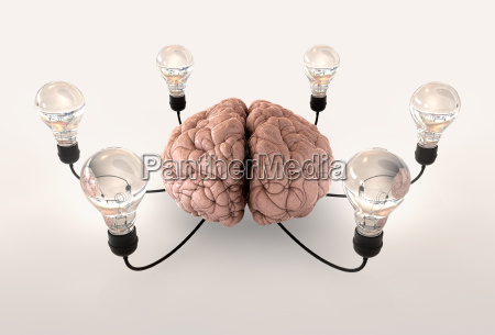 brain and lightbulb imagination