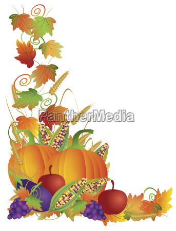 thanksgiving fall harvest and vines border