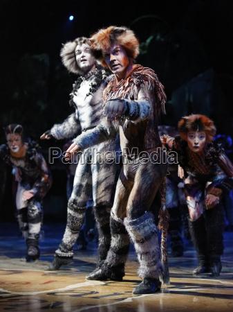 cats theaterzelt