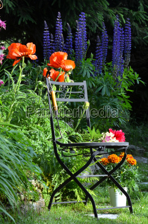 garden chair flower bed colorful