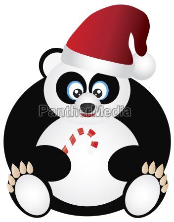 panda sitting with santa hat and