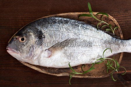 fresh fish on wooden background