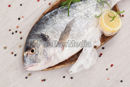 fish seafood background