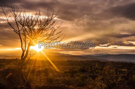 spectacular desert sunrise