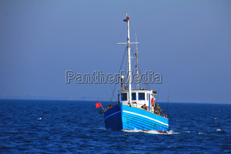 fish cutter on the baltic sea