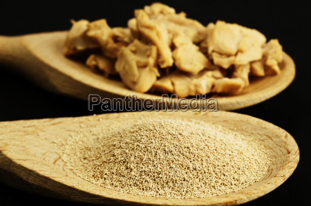 baking ingredient dried yeast and fresh