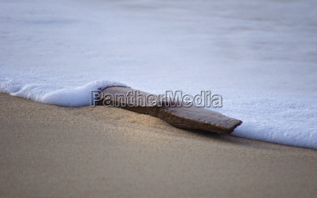 flotsam with wave foam and sand