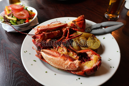 plate lobster seafood delicacy salad hummerzange