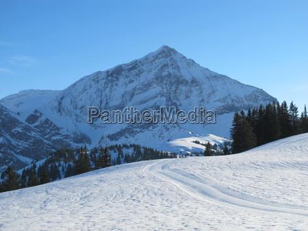 winterlandscape in the saanenland