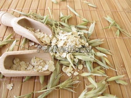 green oats and oatmeal