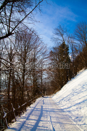 landscape, of, the, mountains, covered, with - 8532190