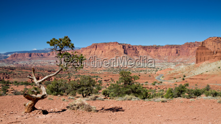 panorama point of capitol reef