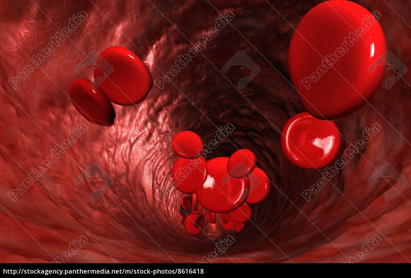 blood, cells, in, a, vein - 8616418
